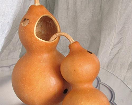 gourdbass-tn